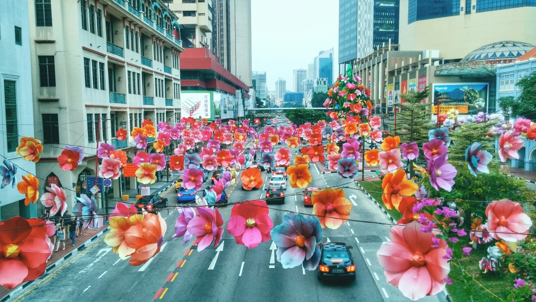 Driving in Singapore. Transportation in Singapore | Skyscanner Canada